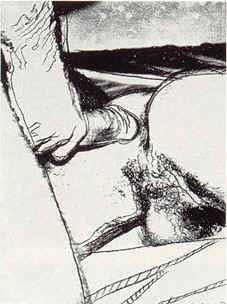Andy Warhol Sex Parts 71